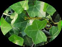 Innovation pt3 pic 2